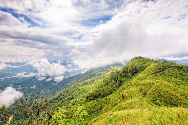 Landscape at Doi Pha Tang view point Stock photo © Yongkiet