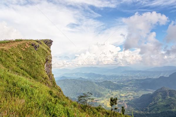 Phu Chi Fa National Forest Park Stock photo © Yongkiet