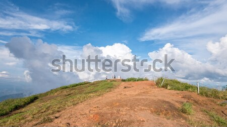 Tourists on viewpoint of Phu Chi Fa Stock photo © Yongkiet