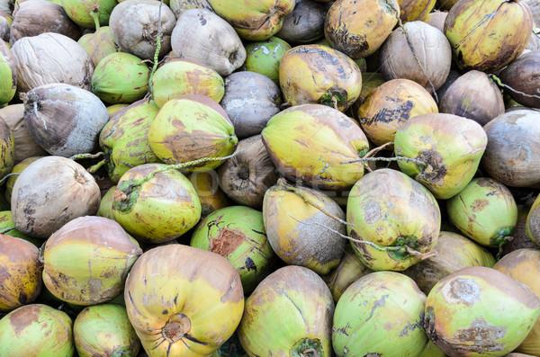 Kokosnoot kokosnoten grond plant tropische Stockfoto © Yongkiet