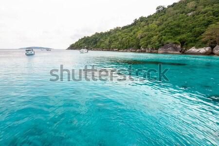 Deniz dalış ada Tayland güzel mavi Stok fotoğraf © Yongkiet