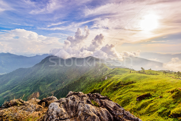 Phu Chi Fa Forest Park at sunset, Thailand Stock photo © Yongkiet