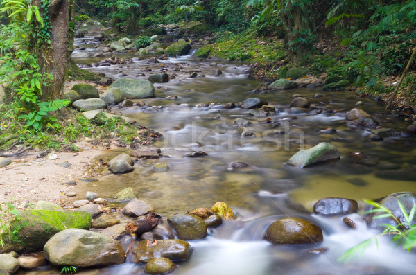 Mountain stream Stock photo © yongtick