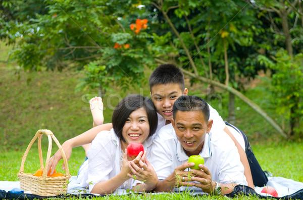 Asiático chinês família relaxante ao ar livre parque Foto stock © yongtick