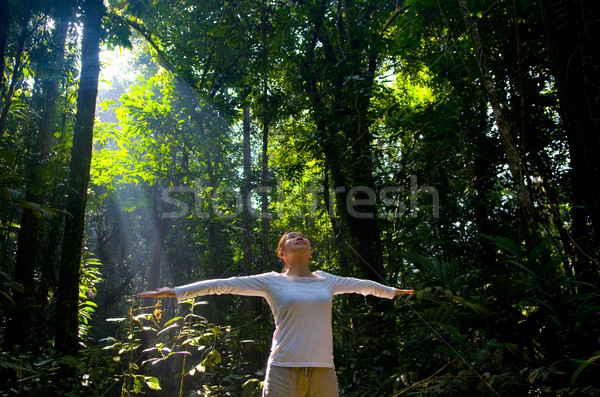 Mulher ioga belo mulher jovem maravilhoso floresta Foto stock © yongtick