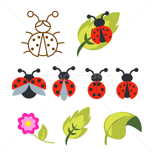Ladybug clipart set with green leaves and outline bug. Stock photo © yopixart