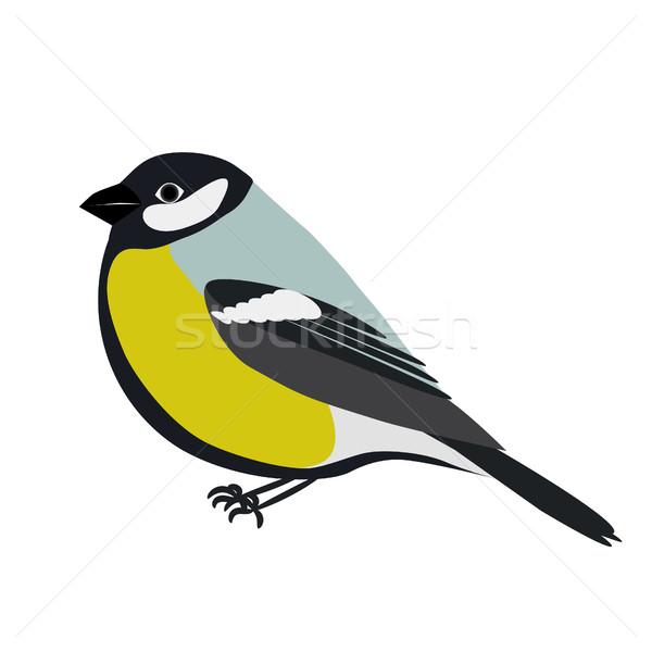 Stock fotó: Rajz · zöld · kék · madár · karakter · szín
