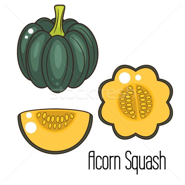 Eikel squash cartoon groene pompoen geheel Stockfoto © yopixart
