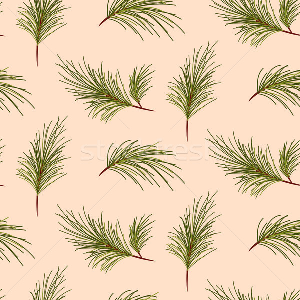 Pine tree branches on pale pink background pattern. Stock photo © yopixart