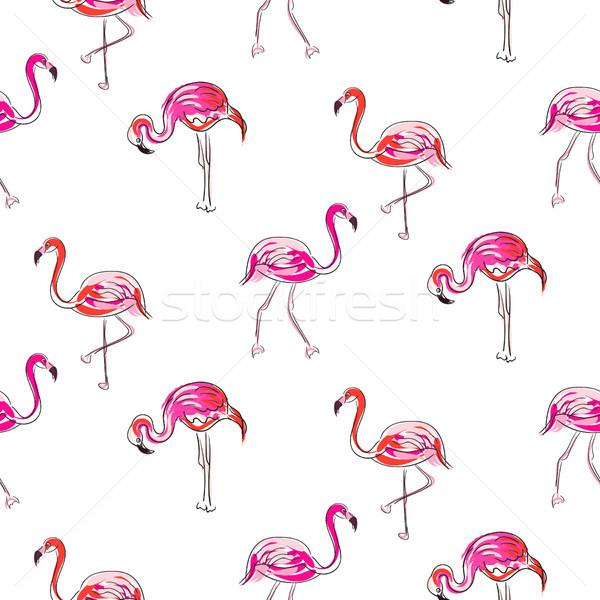 Dibujado a mano boceto rosa flamenco vector Foto stock © yopixart