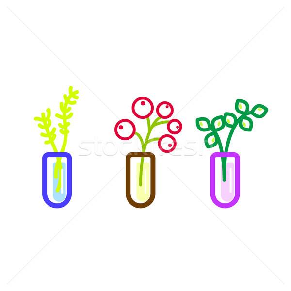 цветы стекла вектора иконки Ягоды цветочный Сток-фото © yopixart