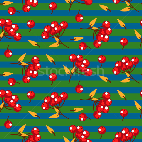 Rowan berry and leaves seamless striped vector pattern. Stock photo © yopixart