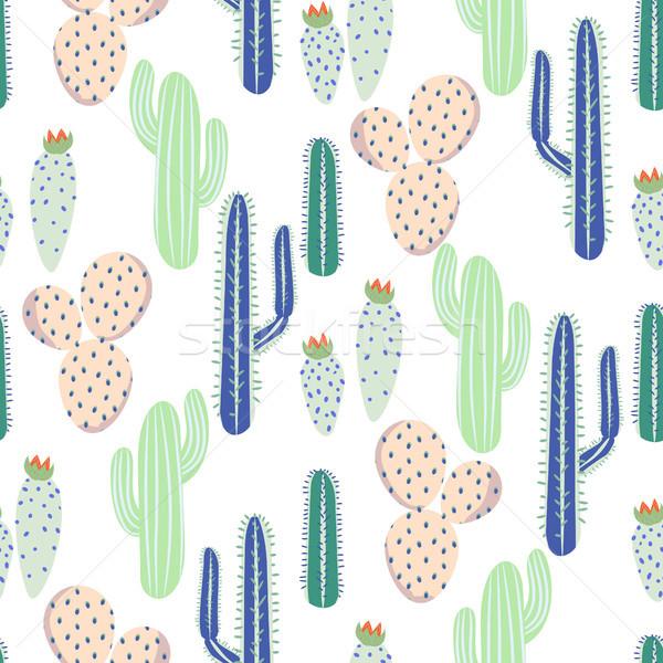 Various cacti desert vector seamless pattern. Abstract thorny plants nature fabric print. Stock photo © yopixart