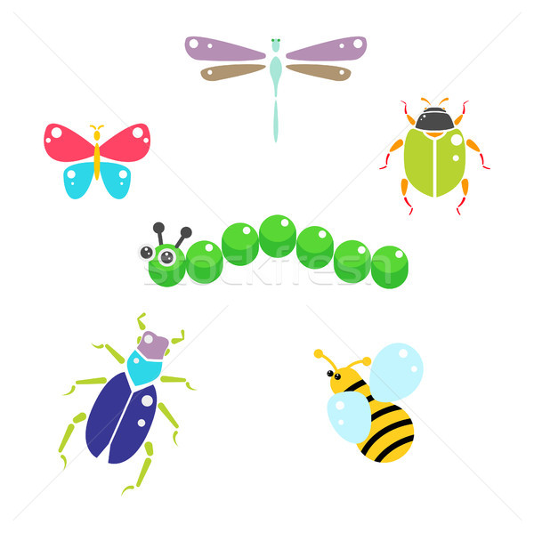Cartoon insects colorful vector set on white. Stock photo © yopixart