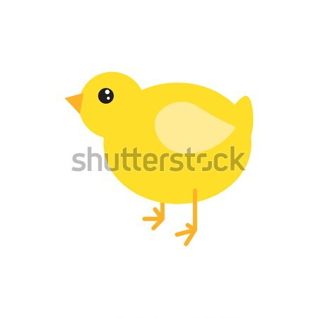 Cartoon kip Geel chick vogel geïsoleerd Stockfoto © yopixart