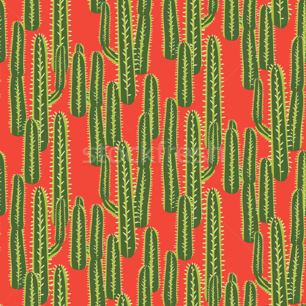 Cactus plant vector seamless pattern. Abstract desert nature fabric print. Stock photo © yopixart