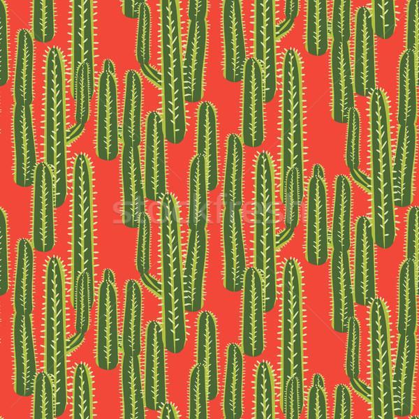 Cactus usine vecteur résumé désert Photo stock © yopixart