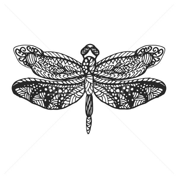 Libel stencil patroon zwarte insect Stockfoto © yopixart