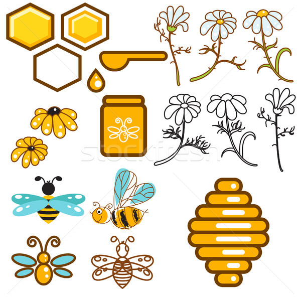 Honeybee and flowers apiary vector icon set. Stock photo © yopixart