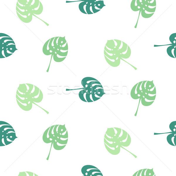 Monstera tropic plant simple leaves seamless pattern. Stock photo © yopixart