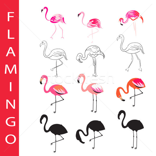 Flamingo birds vector set Cartoon outline and silhouette vector