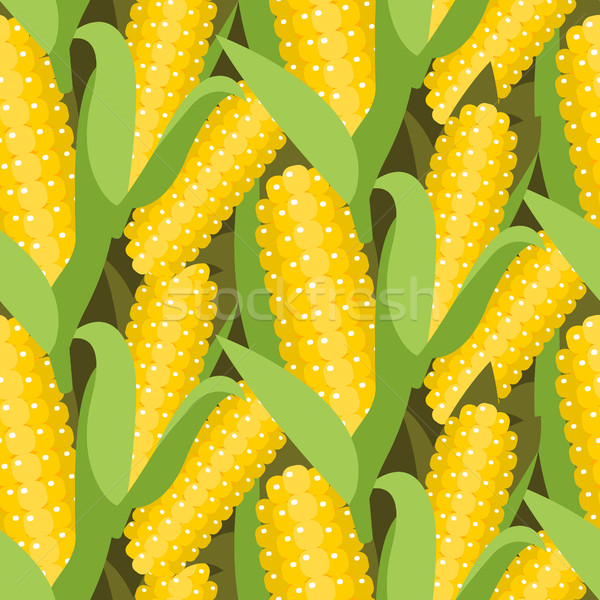 Corn seamless pattern vector illustration. Maize ear or cob. Stock photo © yopixart