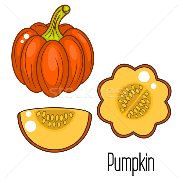 Acorn squash cartoon vector illustration. Stock photo © yopixart
