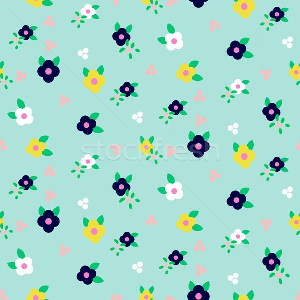 Primavera pequeno campo floral Foto stock © yopixart