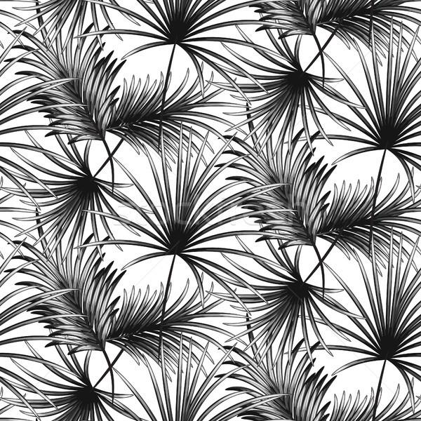 пальмовых листьев бесшовный вектора шаблон белый текстуры Сток-фото © yopixart