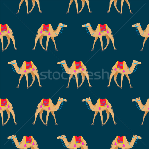 Camel cartoon vector seamless pattern on blue. Stock photo © yopixart