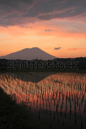 Mt.Iwate in twilight Stock photo © yoshiyayo