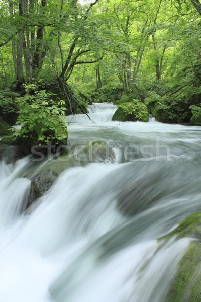 Stock photo: Oirase stream in summer