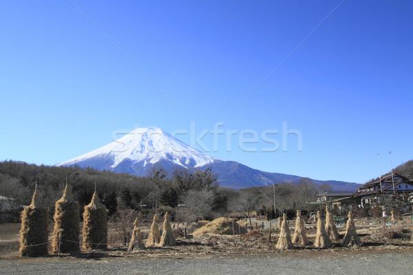 Blue sky água casa natureza paisagem viajar Foto stock © yoshiyayo