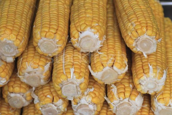 corn boil  Stock photo © yoshiyayo