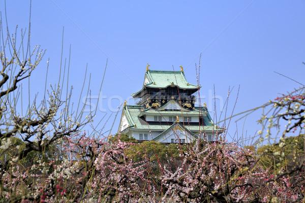 Осака замок слива весны сезон Сток-фото © yoshiyayo