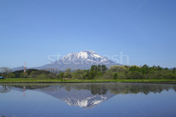 Paisagem grama montanha campo azul fazenda Foto stock © yoshiyayo