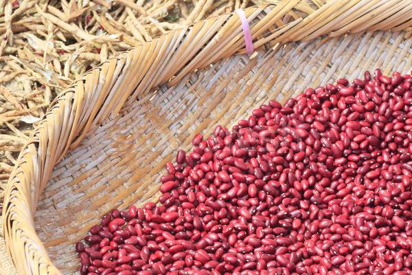 Azuki Bean , Red Bean   Stock photo © yoshiyayo