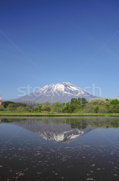 Mt.Iwate and pastoral landscape Stock photo © yoshiyayo