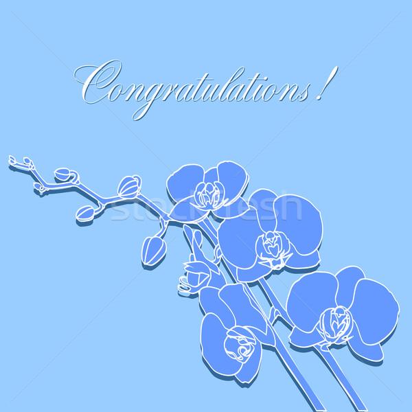 Wenskaart orchideeën Blauw bruiloft verjaardag frame Stockfoto © yulia_mayevska