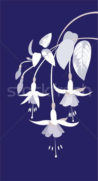 Tak bloemen bladeren Blauw bloem natuur Stockfoto © yulia_mayevska
