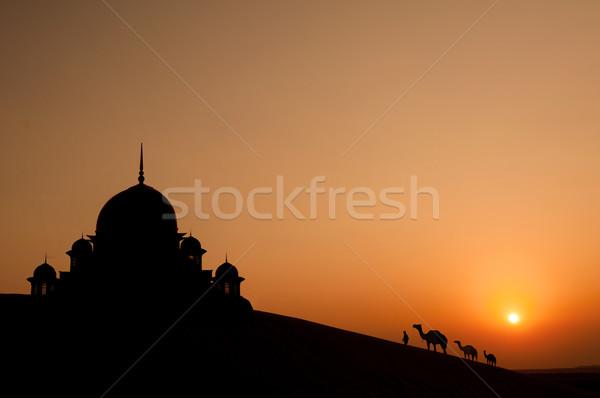 Mecset sivatag tevék sziluett épület tájkép Stock fotó © yuliang11