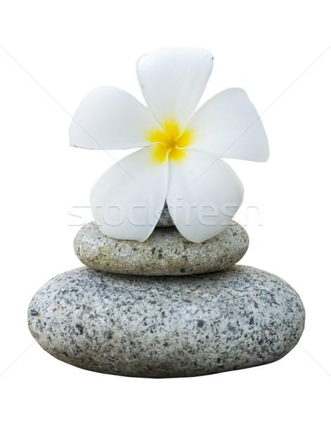 Yalıtılmış kayalar çiçek kaya dinlenmek Stok fotoğraf © yuliang11