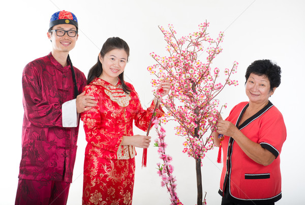 Китайский Новый год семьи ива дерево любви человека Сток-фото © yuliang11