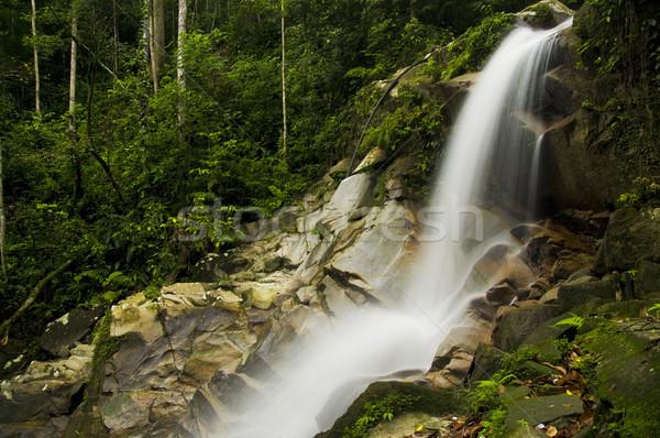 зеленый водопада воды лес фон каменные Сток-фото © yuliang11