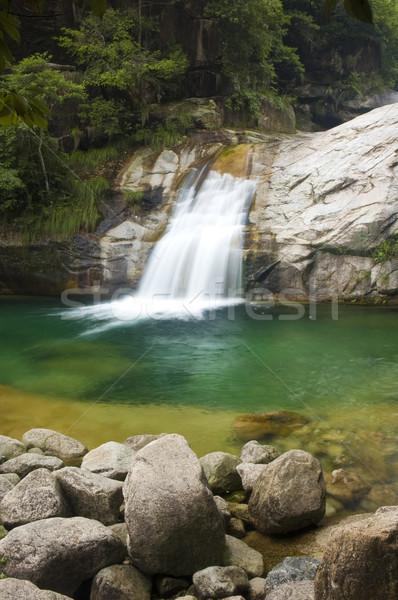 Waterval groene water voorjaar bos landschap Stockfoto © yuliang11