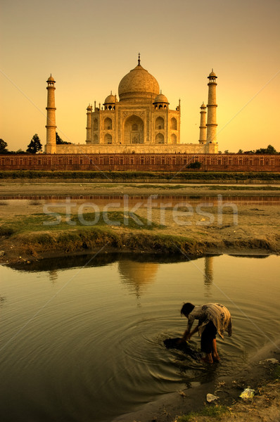 taj mahal Stock photo © yuliang11