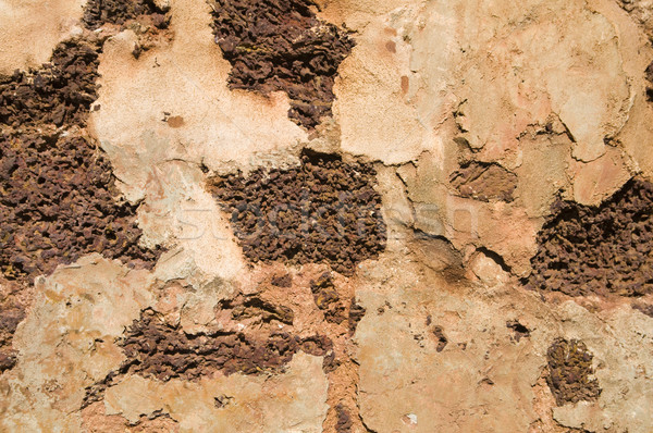 Very old brick for background purpose Stock photo © yuliang11