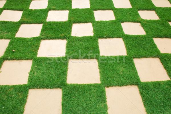 grass tile Stock photo © yuliang11