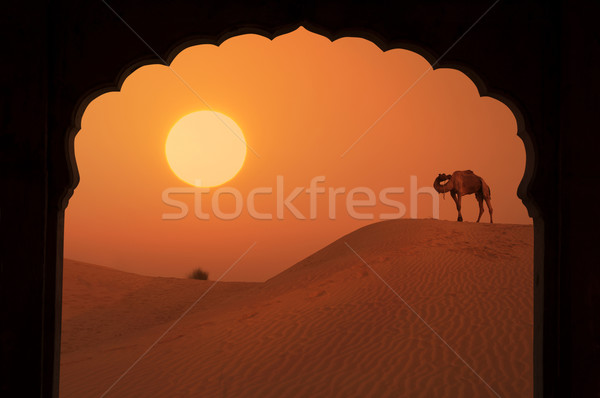 silhouette of arabic architecture on desert Stock photo © yuliang11