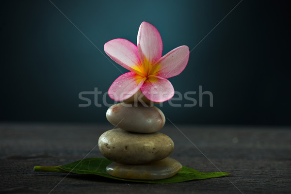 Spa concept in dark background with  ambient lights and cold sto Stock photo © yuliang11